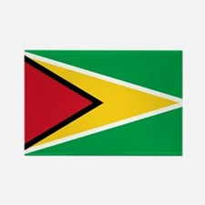 Flag of Guyana Rectangle Magnet