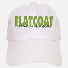 Flatcoat IT'S AN ADVENTURE Baseball Baseball Cap