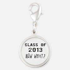 Class of 2013 Now What Charms