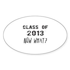 Class of 2013 Now What Decal