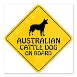 Australian cattle dog Square Car Magnets