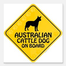 "Cattle Dog On Board Square Car Magnet 3"" x 3"""