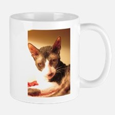 Maggie's Hollywood Shot Mug