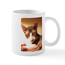 Maggie's Hollywood Shot Mug