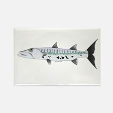 Great Barracuda fish Rectangle Magnet