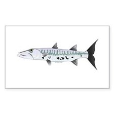 Great Barracuda fish Decal