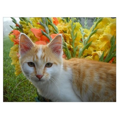 Cat and Flowers Wall Art Poster