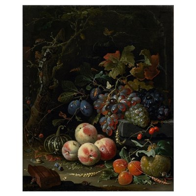 Still Life with Fruit, Foliage and Insects, c.1669 Canvas Art
