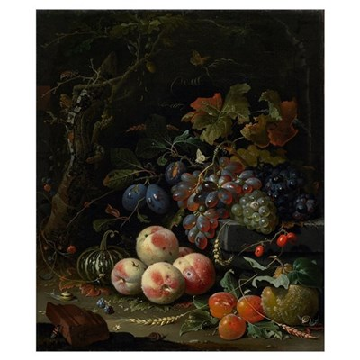 Still Life with Fruit, Foliage and Insects, c.1669 Poster
