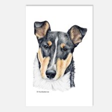 Collie, Short-haired Postcards (Package of 8)