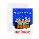 NORTHERN CALIFORNIA CHRISTMAS Cards (Pk of 10)