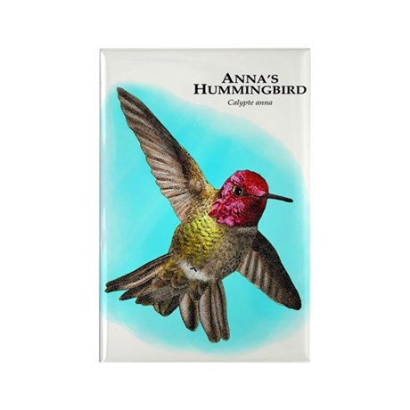 Anna;s Hummingbird Rectangle Magnet