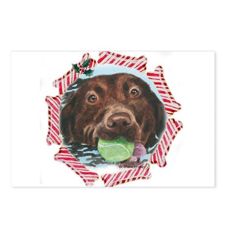 Chesapeake Bay Retriever Postcards (Package of 8)