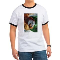 Orangutan T