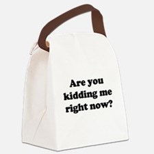 Are you kidding me.png Canvas Lunch Bag