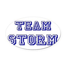 Team Storm blue.png Oval Car Magnet