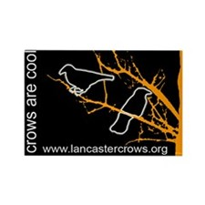 Crows are Cool - 10 pack rectangular magnets