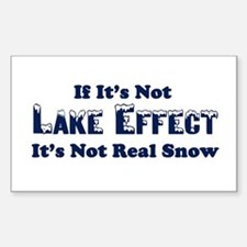 If its not lake effect, its not real snow Decal