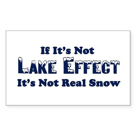 If its not lake effect, its not real snow Sticker