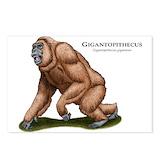 Extinct animals Postcards