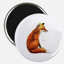 Red Fox Animal Magnet