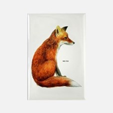 Red Fox Animal Rectangle Magnet