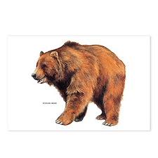 Kodiak Bear Animal Postcards (Package of 8)