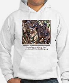 Ring-Tailed Lemur Family Hoodie
