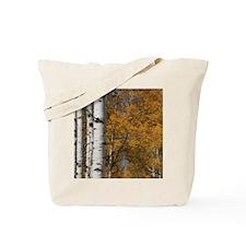 Autumn Aspens Tote Bag