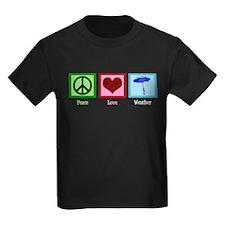 Peace Love Weather T