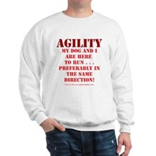 Directionally Challenged Sweater