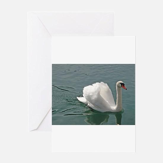 Reflective white swan Greeting Card