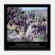 Wild Burro & Joshua Tree Tile Coaster