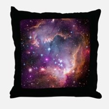 SMC Throw Pillow