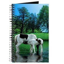Horse Reflections Journal