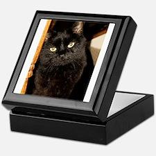 Black Cat named Cosmo Keepsake Box