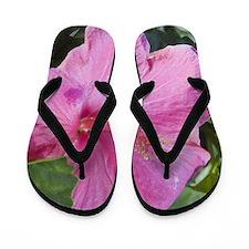 Pink Hibiscus Flip Flops