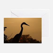 Heron Greeting Cards (Pk of 10)