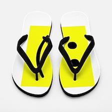 geek smiley.png Flip Flops