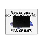 Full Of Nuts Picture Frame