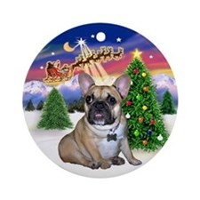 Santa's Take Off & FBD (GG) Ornament (Round)