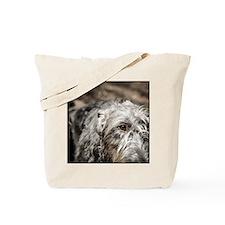 Sweet Curiosity Tote Bag