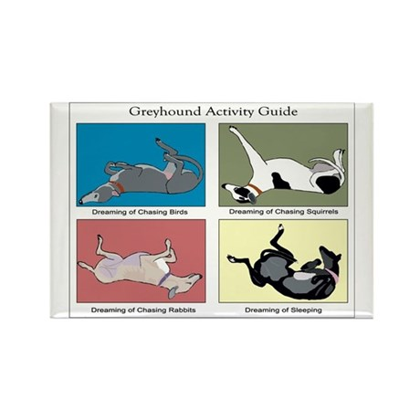 Greyhound Activity Guide Rectangle Magnet (10 pack