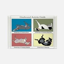 Greyhound Activity Guide Rectangle Magnet