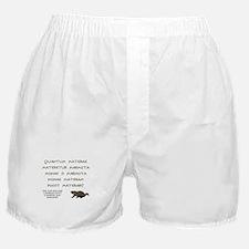 Latin Woodchuck Boxer Shorts