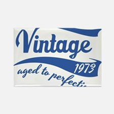 Vintage 1973 aged to perfection birthday design Re