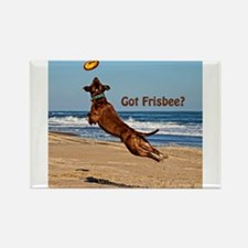 Got Frisbee? Rectangle Magnet
