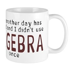 Didn't use algebra today Mug