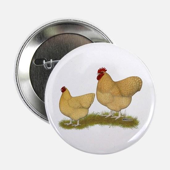 "Orpington Lemon Cuckoo Chickens 2.25"" Button"