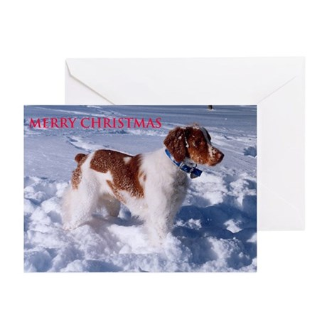 Merry Christmas Greeting Cards (Package
